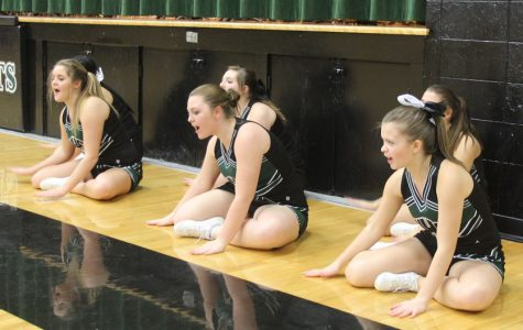 Cheerleaders show appreciation to sports in new ways