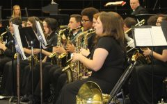 Musicians earn ratings at state solo and small ensemble contest