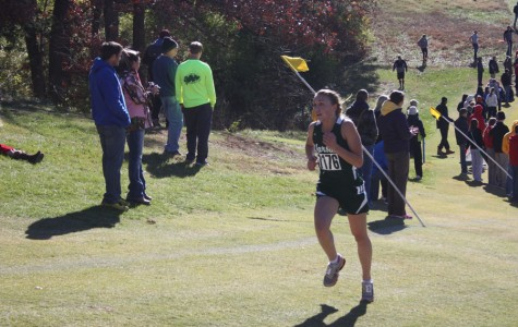 Four qualify, Porter takes third at state