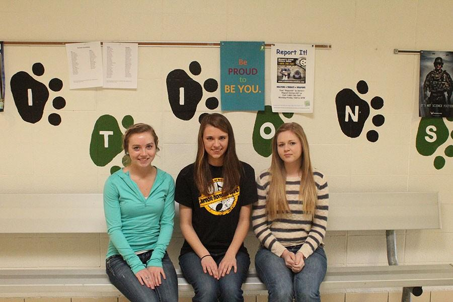 Senior Megan Brown, juniors Claudia Schmitz, and Cassie Pittman are the participates that made it to state for FBLA.