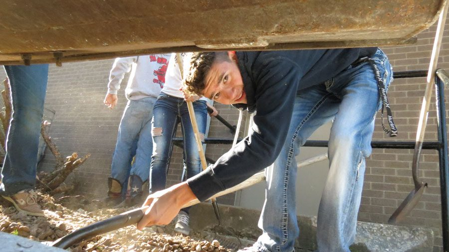 Senior Thane Henderson scoops rocks into the tractor loader. The rocks were then put in a pile by the greenhouse.