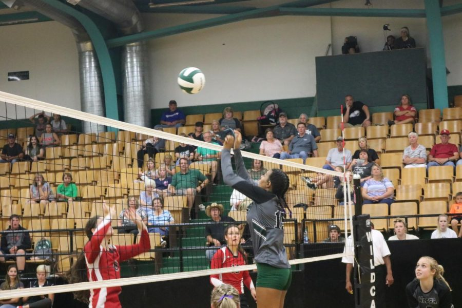 Junior Ariaunna Johnson-Childers tips the ball over the net against the Lincoln Cardinals on Sept. 4.