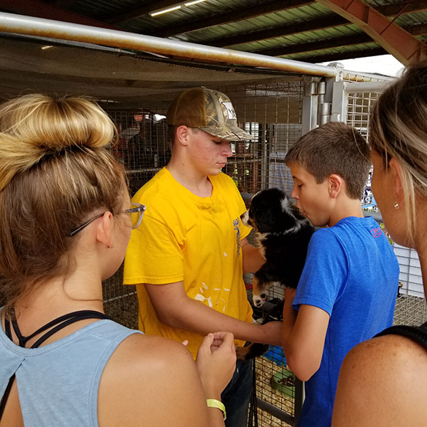 Junior Jake Steiner shows off a puppy at the State Fair Children's Barnyard. Warsaw FFA helped operate the barnyard with chapters from Lincoln and Green Ridge.