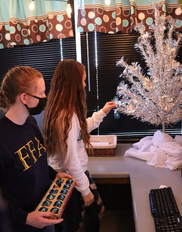 Freshman Angela Konopasek and junior Sarah Johnson decorate business teacher Bethany Siegel's classroom Christmas tree. Siegel has been  using her grandfathers glass ornaments to decorate her tree for many years now.